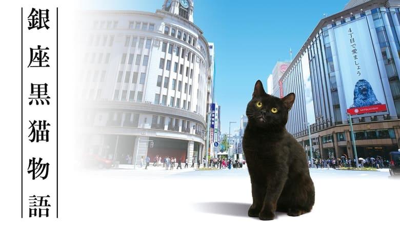 Ginza+Black+Cat+Story