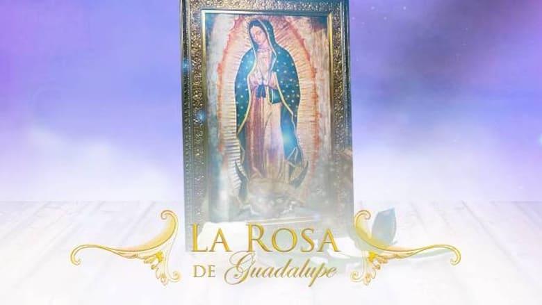 مسلسل La Rosa De Guadalupe 2020 مترجم اونلاين