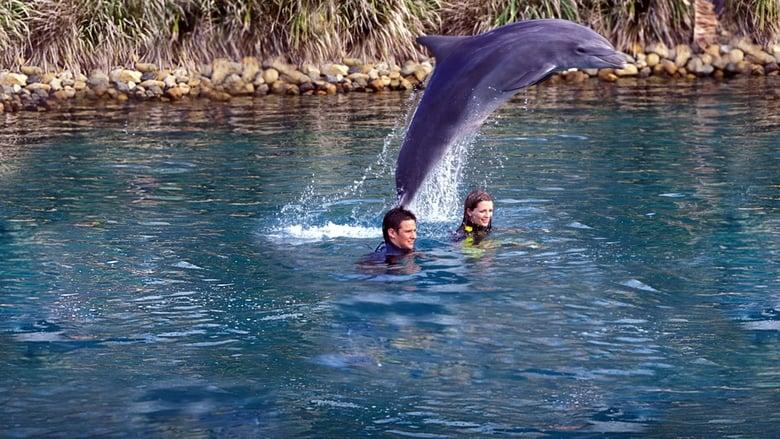 Vicky+e+i+delfini