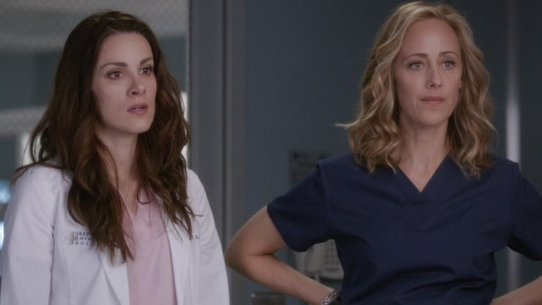 greys anatomy saison 15 streaming