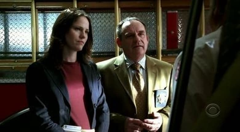 CSI: Crime Scene Investigation: 6×17