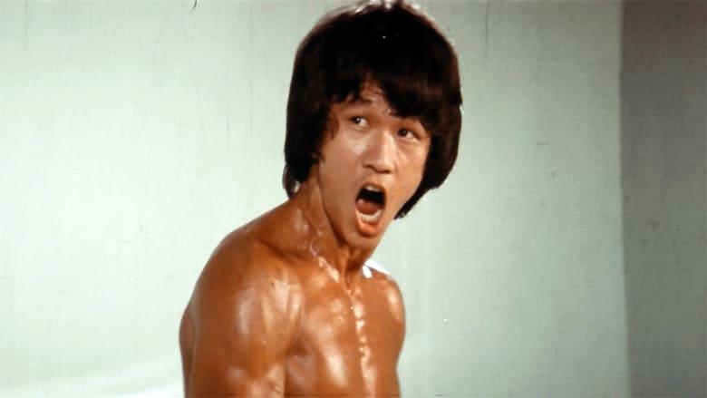 Watch The Clones of Bruce Lee Putlocker Movies