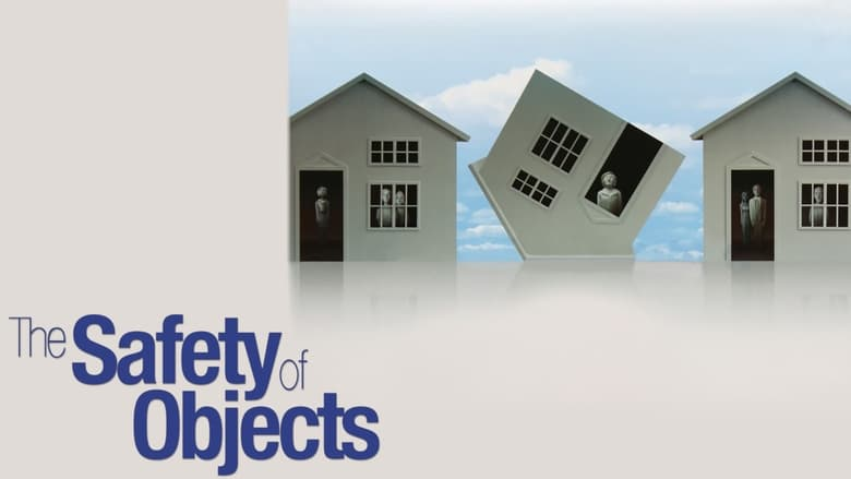 Watch The Safety of Objects free