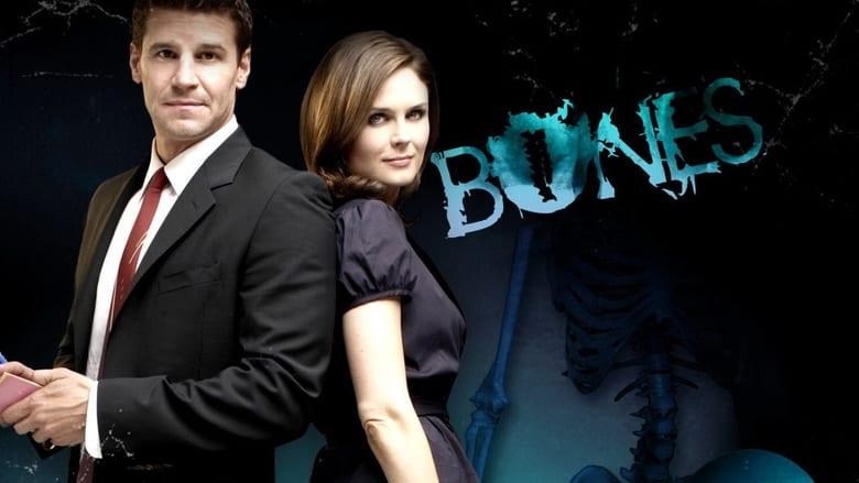 Ver Poster SerieHD Bones online