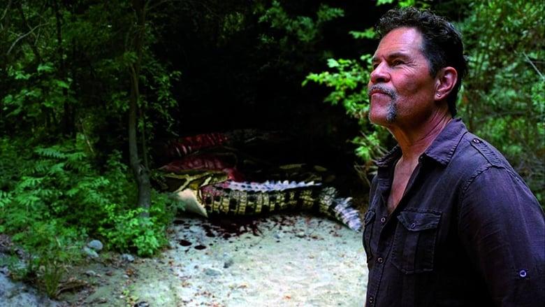 مشاهدة فيلم Mega Python vs. Gatoroid 2011 مترجم أون لاين بجودة عالية