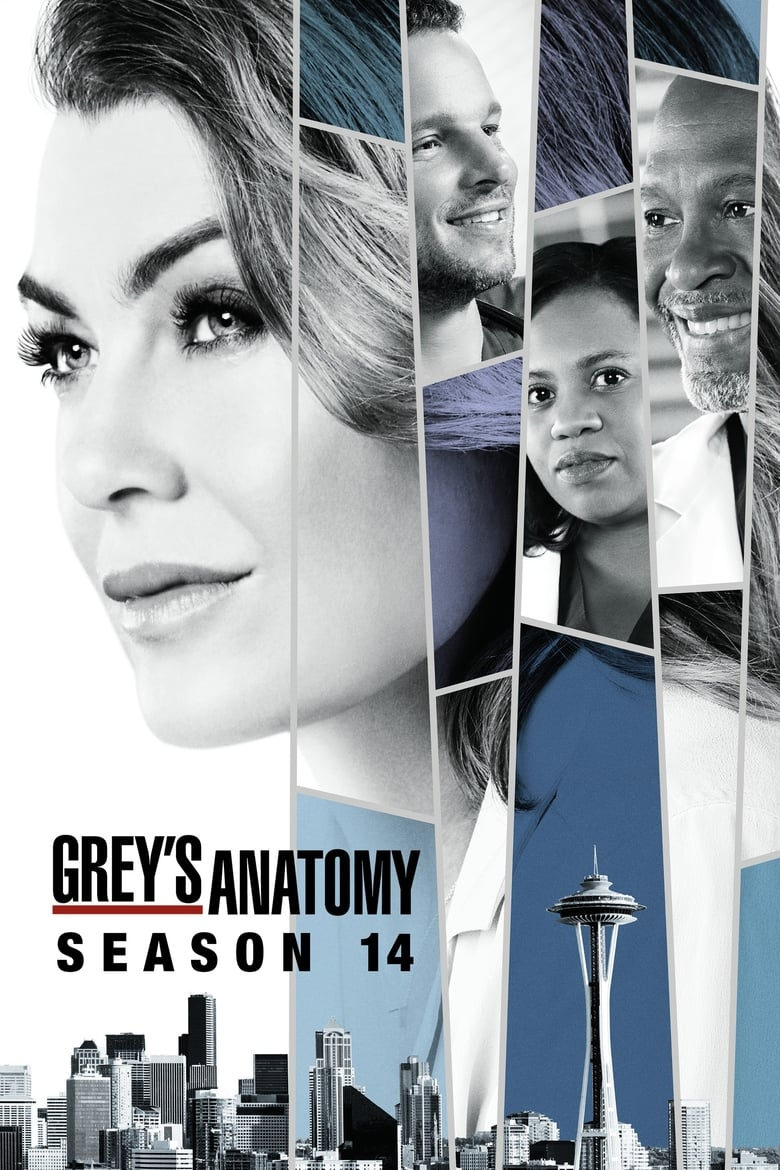 Grey's Anatomy: 14×15