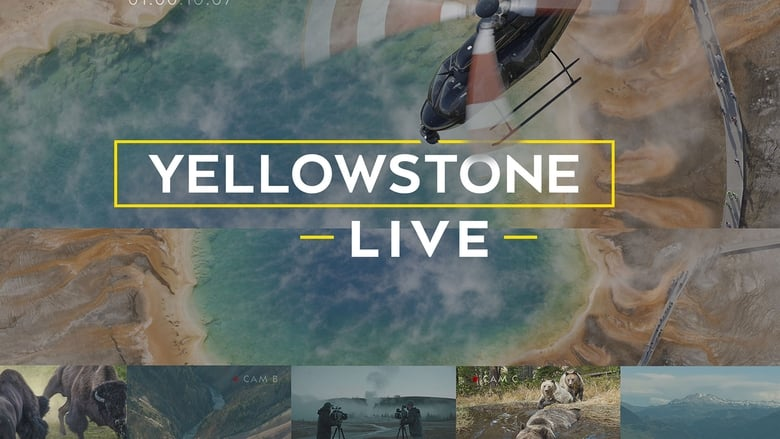 Yellowstone LIVE (TV Mini-Series 2018) banner backdrop