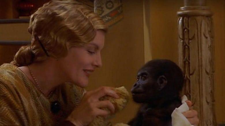 Buddy+-+Un+gorilla+per+amico