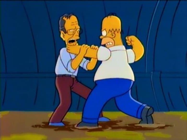 The Simpsons Season 7 Episode 13