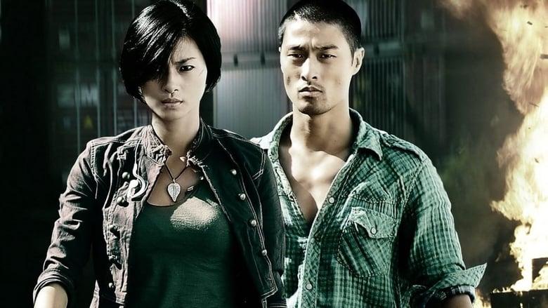 Duelo de Assassinos Torrent (2009)