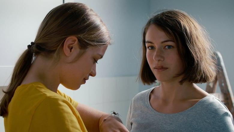 кадр из фильма Девушка и паук