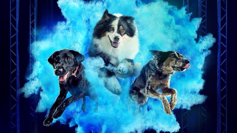 مسلسل America's Top Dog 2020 مترجم اونلاين