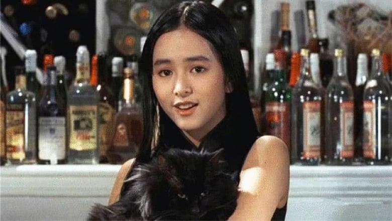 衛斯理之老貓