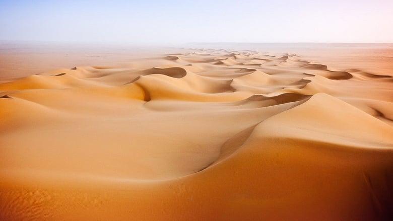 Wild+Arabia