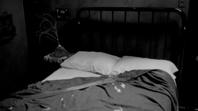 فيلم Eraserhead Stories 2001 مترجم اونلاين