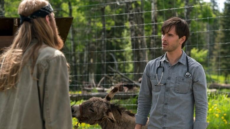 Heartland Season 10 Episode 3 : New Kid in Town | MTFLIX