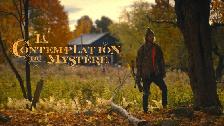 La contemplation du mystère (2020)