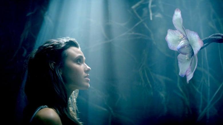 Šanaros kronikos / The Shannara Chronicles (2016) 1 Sezonas