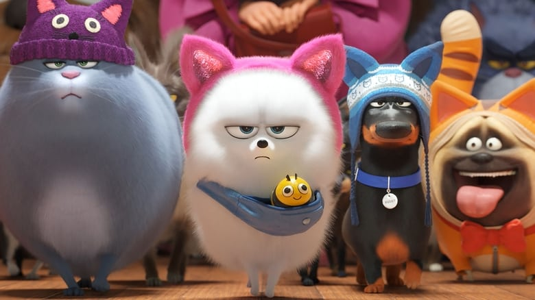 The Secret Life of Pets 2 Online Subtitrat