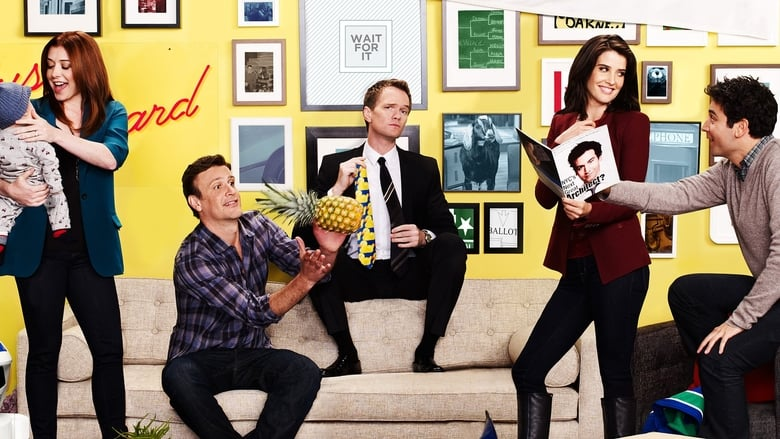 How I Met Your Mother, Saison 9 (VOST)