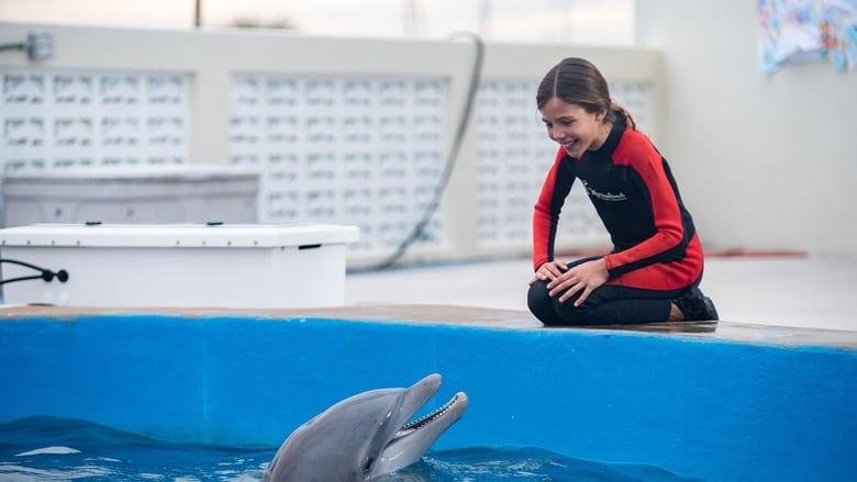 فيلم Bernie the Dolphin 2 2019 مترجم اون لاين