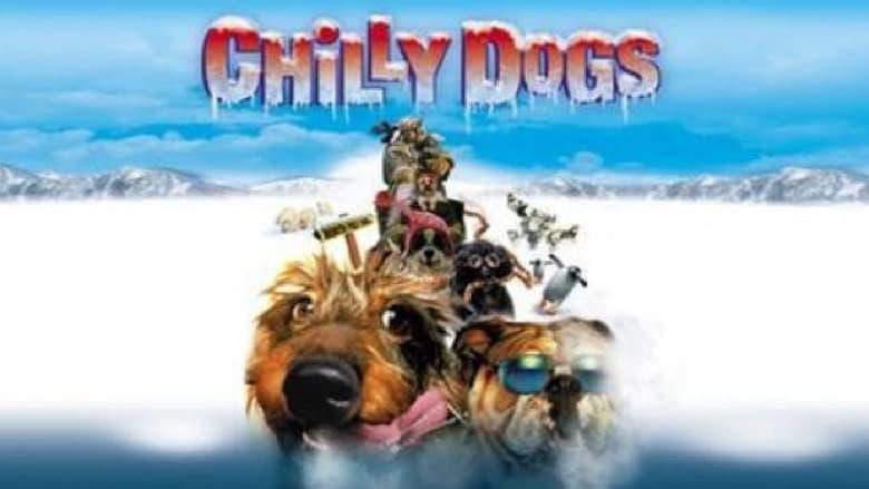 فيلم Chilly Dogs 2001 مترجم اونلاين