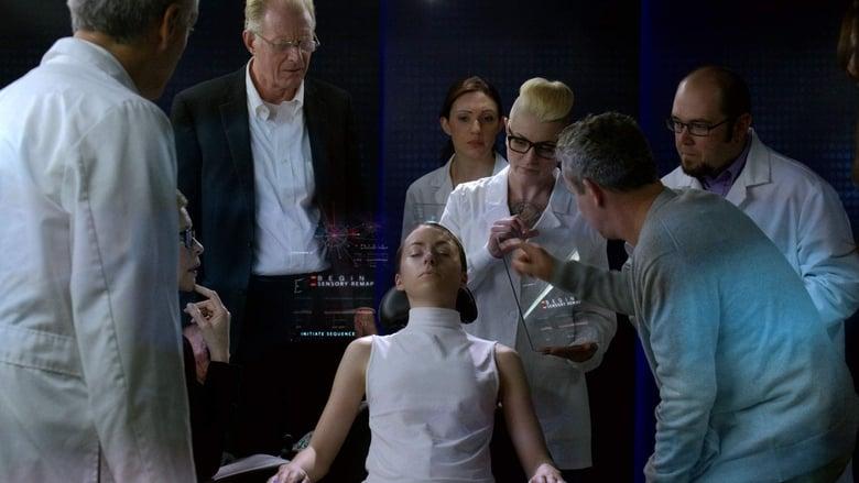 Película Amelia 2.0 En Buena Calidad Gratis