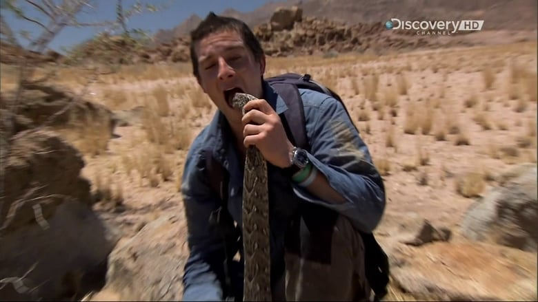 Scarica Fine Dining With Bear Grylls In Buona Qualità Torrent