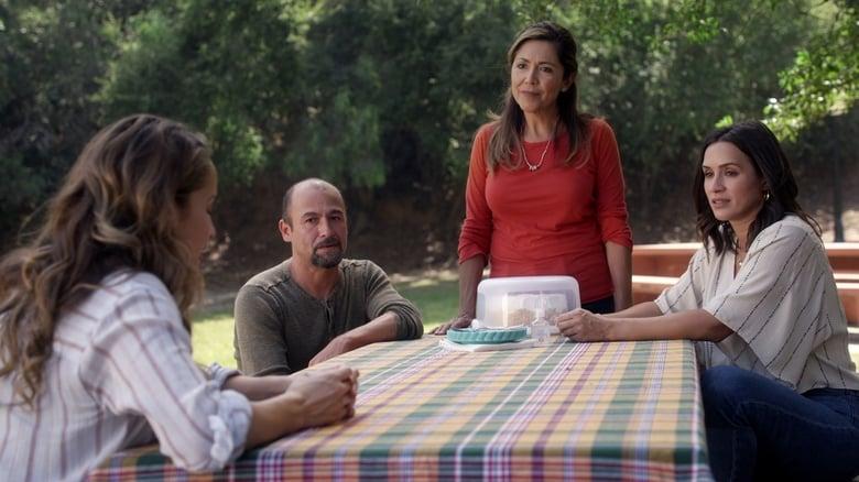Voir série Grey's Anatomy – Station 19 Saison 4 Episode 2 streaming français gratuit