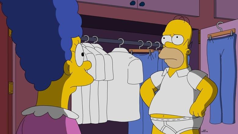 The Simpsons Season 28 Episode 5