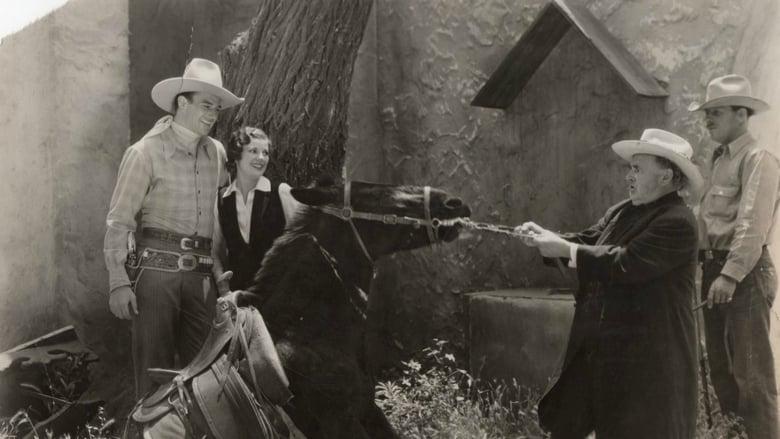 Watch Ride Him, Cowboy Putlocker Movies