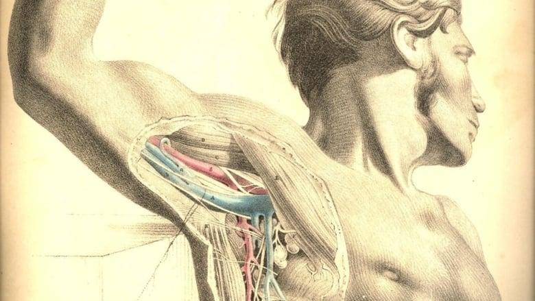 مشاهدة فيلم Anatomy 2 2003 مترجم أون لاين بجودة عالية