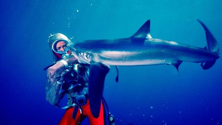 مشاهدة فيلم Playing With Sharks 2021 مترجم أون لاين بجودة عالية