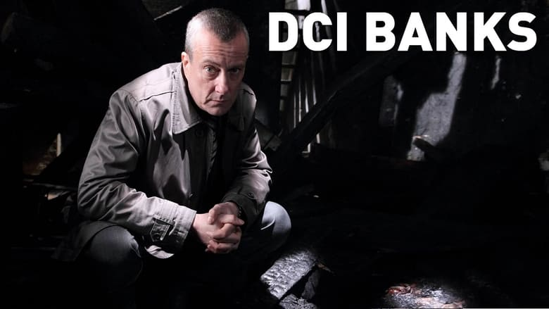 DPStream DCI Banks - Série TV - Streaming - Télécharger poster .2