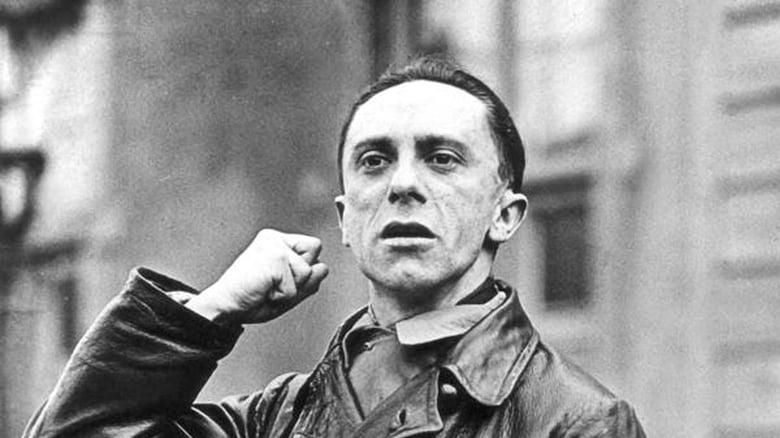 Das+Goebbels-Experiment