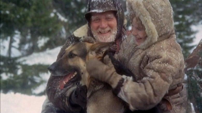 Film Ansehen Die Teufelsschlucht der wilden Wölfe Kostenlos In Guter Qualität An