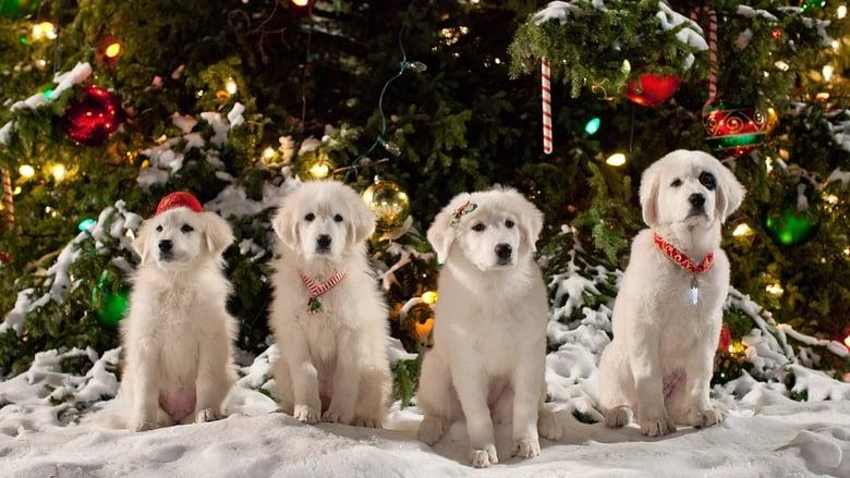 Zampa+2+-+I+cuccioli+di+Natale