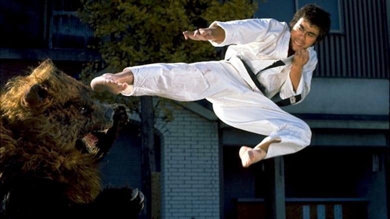 Watch Karate Bear Fighter free