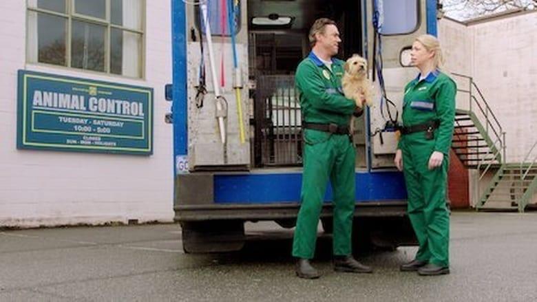 Pup Academy Sezonul 2 Episodul 5 Online Subtitrat FSonline