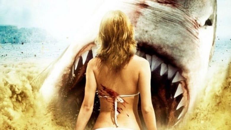 Sand+Sharks