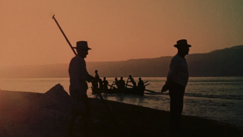 Still from The Age of Swordfish