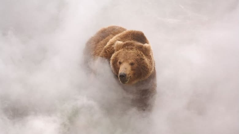 Voir Terre des ours streaming complet et gratuit sur streamizseries - Films streaming