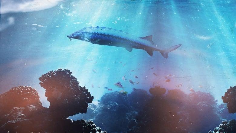 فيلم Saving the Dinosaur Fish 2020 مترجم