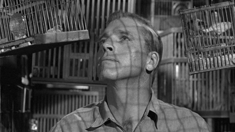 Watch Birdman of Alcatraz Putlocker Movies