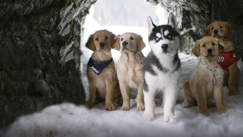 Snow+Buddies.+Supercuccioli+sulla+neve