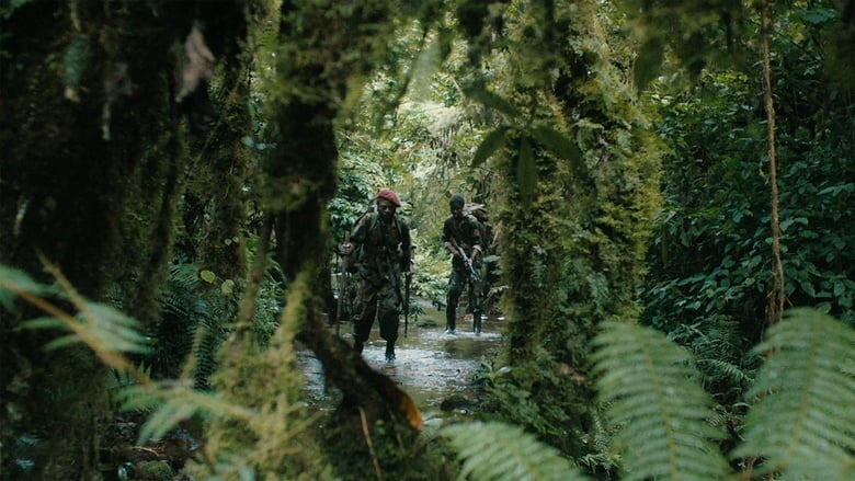 Guarda Film La Miséricorde de la jungle In Buona Qualità Hd 1080p