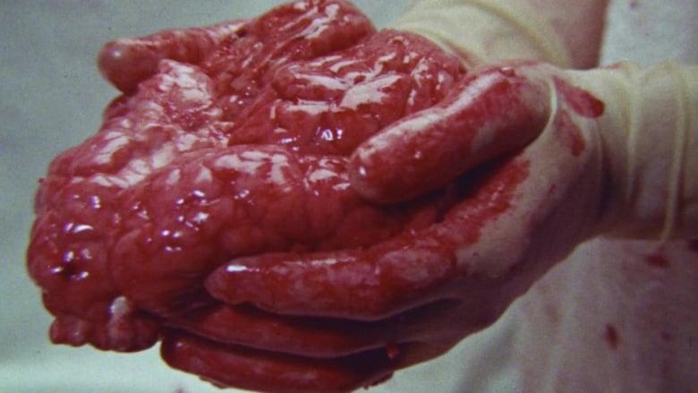 Nézd Brain of Blood Magyarul Szinkronizálva