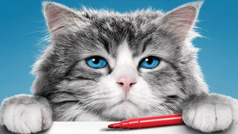 Trailer de la Pelicula Siete vidas, este gato es un peligro online