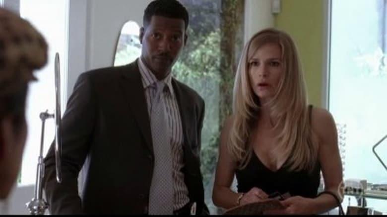 Detektyvė Džonson / The Closer (2005) 1 Sezonas