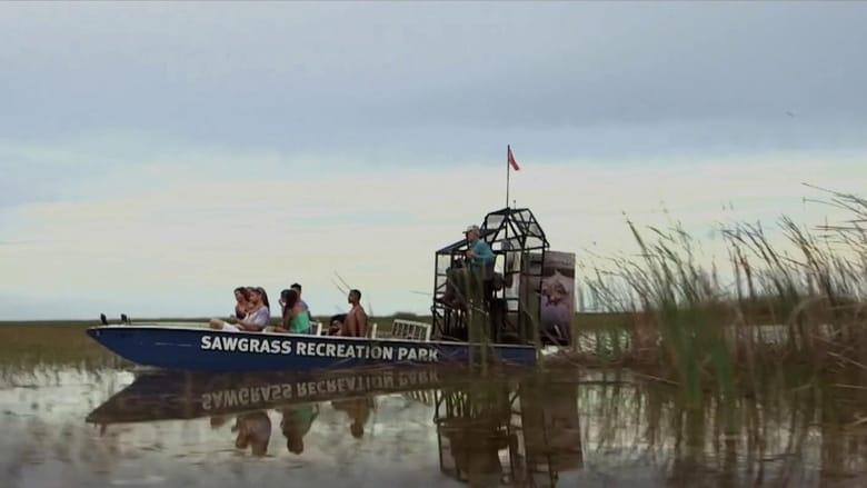 Voir Lake Fear 2: The Swamp streaming complet et gratuit sur streamizseries - Films streaming